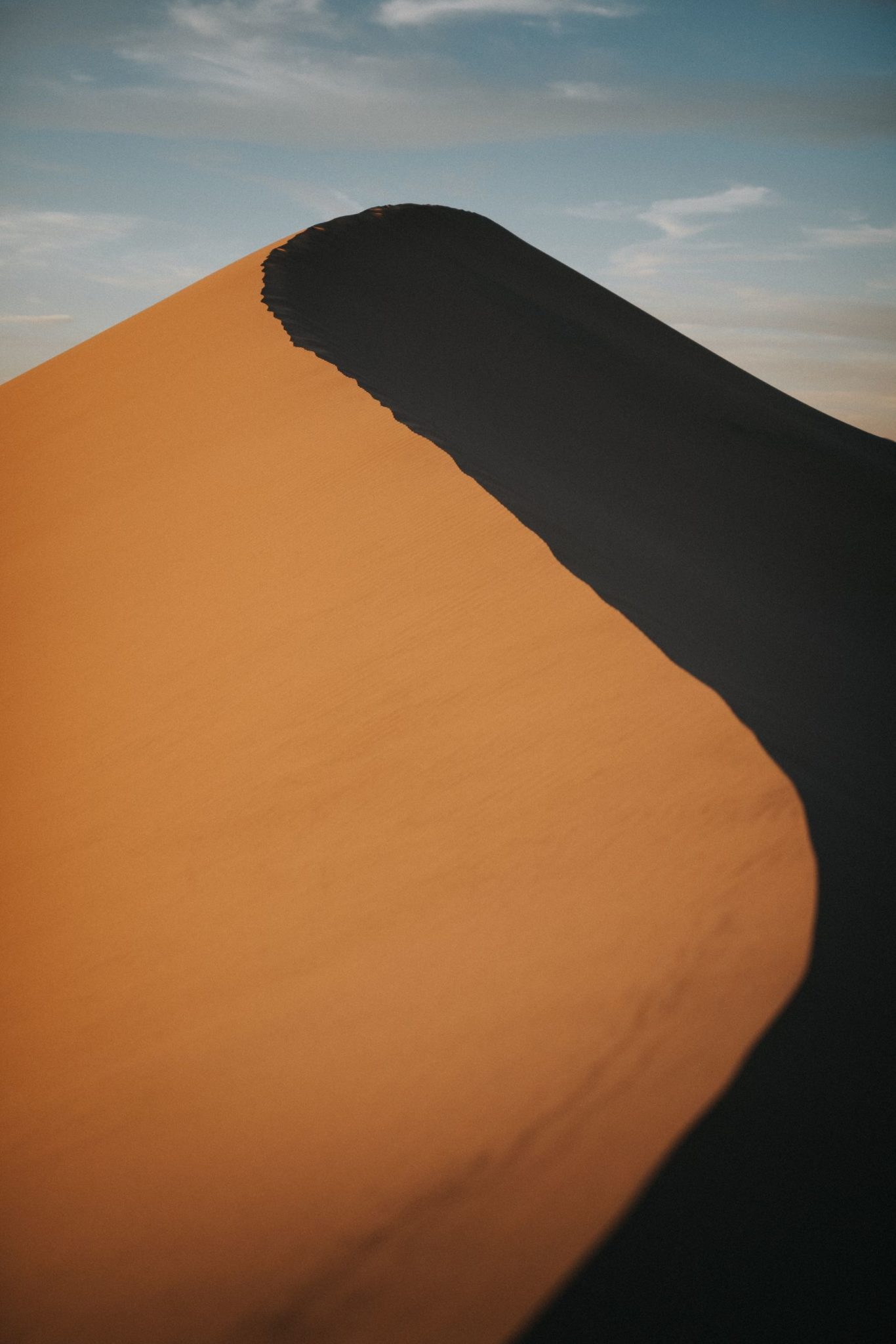 Curvature, The Mojave Desert Collection