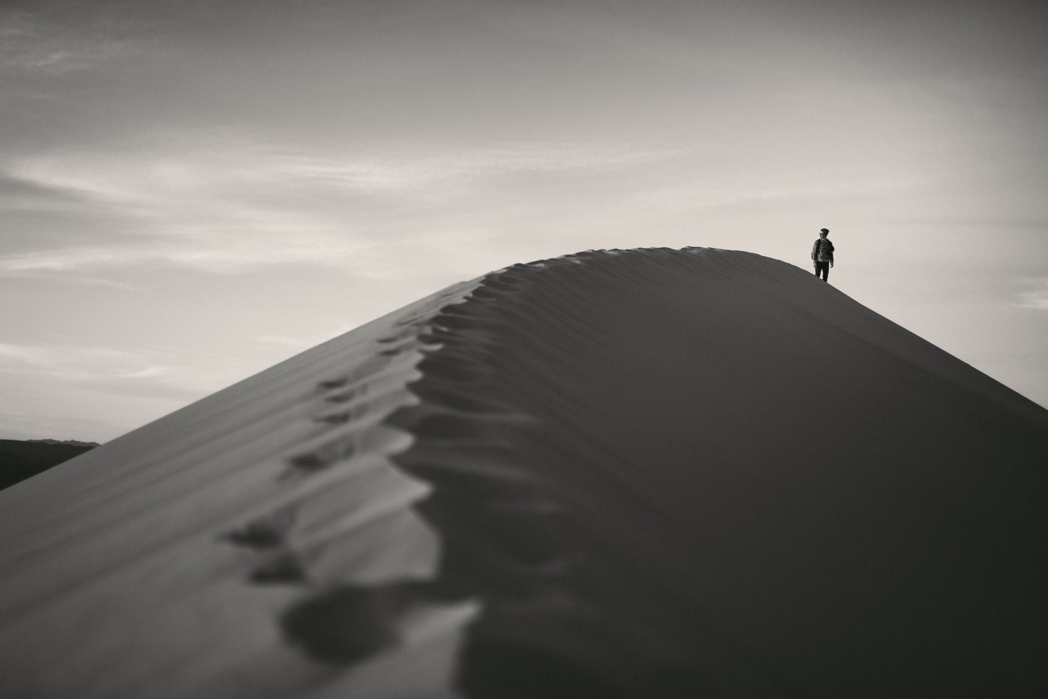 The Wanderer, Mojave Desert Collection
